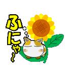 猫ざんまい(個別スタンプ:03)