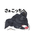 動く!ゴリラごりらⅡ(個別スタンプ:11)