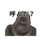 動く!ゴリラごりらⅡ(個別スタンプ:16)