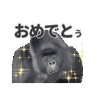 動く!ゴリラごりらⅡ(個別スタンプ:24)