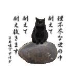 愛犬マロンの肉球【写真】(個別スタンプ:22)