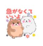 ポメラニアンぽちゃん☆やさしい言葉(個別スタンプ:10)