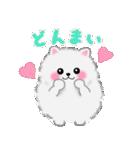 ポメラニアンぽちゃん☆やさしい言葉(個別スタンプ:23)