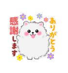 ポメラニアンぽちゃん☆やさしい言葉(個別スタンプ:34)