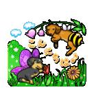 可愛い子犬のダックスたち(個別スタンプ:01)