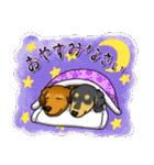 可愛い子犬のダックスたち(個別スタンプ:02)