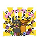 可愛い子犬のダックスたち(個別スタンプ:04)