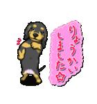 可愛い子犬のダックスたち(個別スタンプ:06)