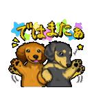 可愛い子犬のダックスたち(個別スタンプ:07)