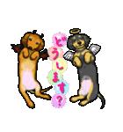 可愛い子犬のダックスたち(個別スタンプ:11)