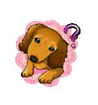 可愛い子犬のダックスたち(個別スタンプ:17)