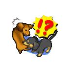 可愛い子犬のダックスたち(個別スタンプ:19)