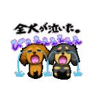 可愛い子犬のダックスたち(個別スタンプ:23)