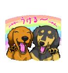 可愛い子犬のダックスたち(個別スタンプ:25)
