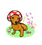 可愛い子犬のダックスたち(個別スタンプ:31)
