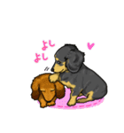 可愛い子犬のダックスたち(個別スタンプ:33)
