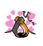 可愛い子犬のダックスたち(個別スタンプ:34)