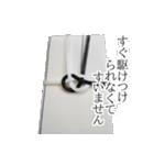 のし袋のスタンプ(個別スタンプ:29)