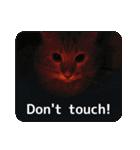 猫のちゃぶちゃん(個別スタンプ:13)