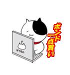 カレー沢 薫のすごくつかえるスタンプ(個別スタンプ:40)