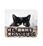 悪気のない野良猫たち(個別スタンプ:14)