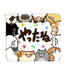 吹き出しボンレス犬&ボンレス猫(個別スタンプ:16)
