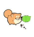 吹き出しボンレス犬&ボンレス猫(個別スタンプ:25)