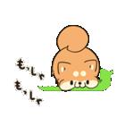 吹き出しボンレス犬&ボンレス猫(個別スタンプ:26)