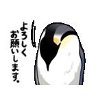 エンペラーといっしょ(mato)(個別スタンプ:10)
