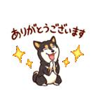まいにち柴ちゃん(個別スタンプ:02)