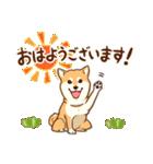 まいにち柴ちゃん(個別スタンプ:11)