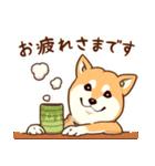 まいにち柴ちゃん(個別スタンプ:12)