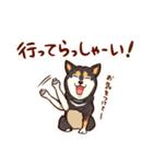 まいにち柴ちゃん(個別スタンプ:26)