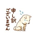 まいにち柴ちゃん(個別スタンプ:35)