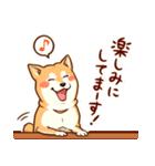 まいにち柴ちゃん(個別スタンプ:36)