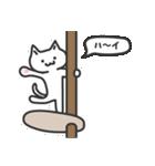普通の白いネコ(個別スタンプ:16)