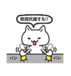 普通の白いネコ(個別スタンプ:17)