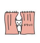 普通の白いネコ(個別スタンプ:33)