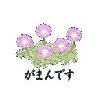 花かたらい 丁寧・敬語の挨拶(個別スタンプ:38)