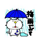 みちのくねこ 春夏秋冬「夏」(個別スタンプ:1)