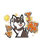 柴犬大好きスタンプ(個別スタンプ:02)
