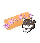 柴犬大好きスタンプ(個別スタンプ:03)