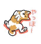 柴犬大好きスタンプ(個別スタンプ:04)