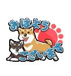 柴犬大好きスタンプ(個別スタンプ:13)