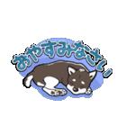 柴犬大好きスタンプ(個別スタンプ:14)