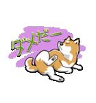 柴犬大好きスタンプ(個別スタンプ:22)