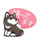 柴犬大好きスタンプ(個別スタンプ:23)