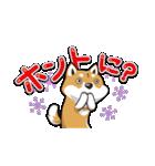柴犬大好きスタンプ(個別スタンプ:27)