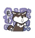 柴犬大好きスタンプ(個別スタンプ:32)