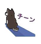 柴犬大好きスタンプ(個別スタンプ:38)
